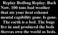 Replay Bedbug Replay. My Bed bug Replay Bed bug Back Now. 100 tons bad weather that ate your heat exhaust mental capibility gone. Is gone.