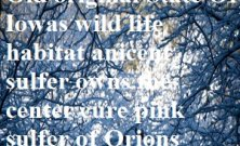 Sulfer the cure surrounding. Old State of Iowas owns Orions nebular center pink sulfer the cure.